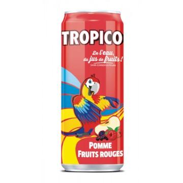 Canette aluminium boisson tropico pomme fruits rouge 33 cl slim